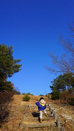 【ママブログ】野外保育「森のようちえん」どこかで見たことや聞いたことはありませんか?