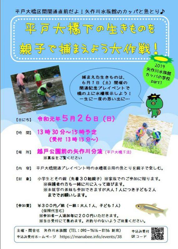 平戸大橋下の生きものを親子で捕まえよう大作戦!矢作川水族館のカッパと魚とり♪